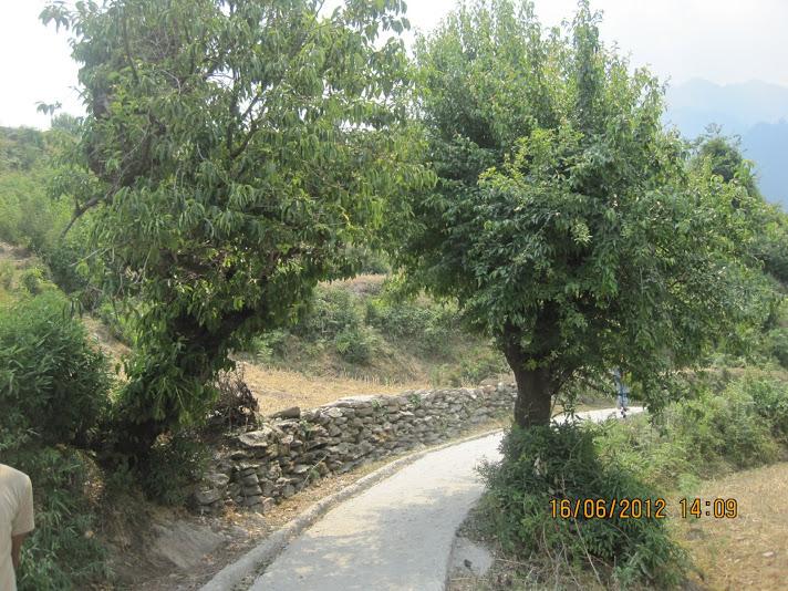 DHYAN BADRI1