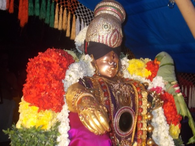 Srivilliputtur_Thiruvaadipooram_2013_21