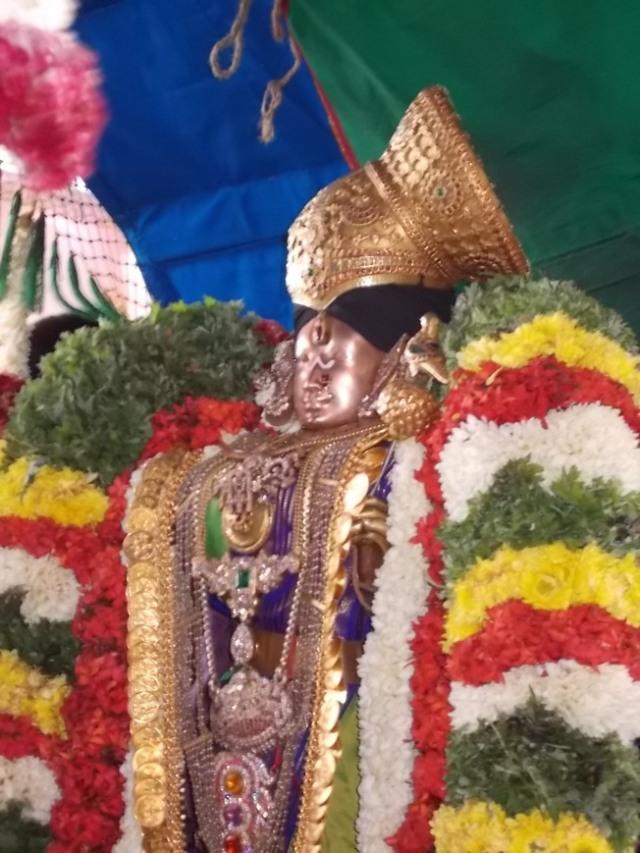 Srivilliputtur_Thiruvaadipooram_2013_29