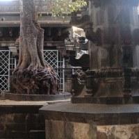 BHAKTHA  KANHOPATRA   DEVOTION TO   LORD VITTALA