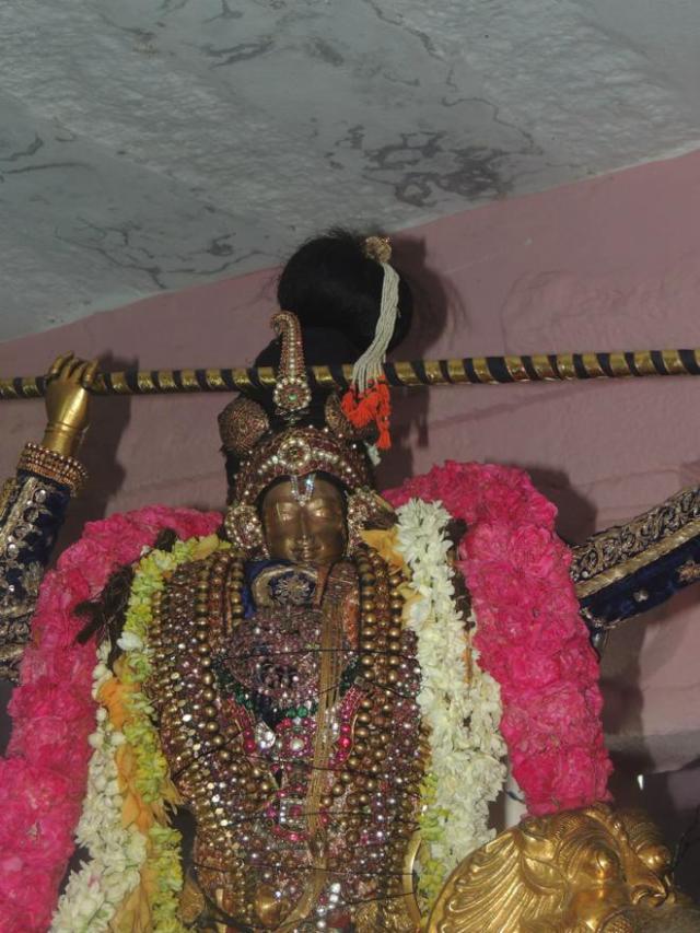 ThiruNagari-Vedupari-Utsavam_086