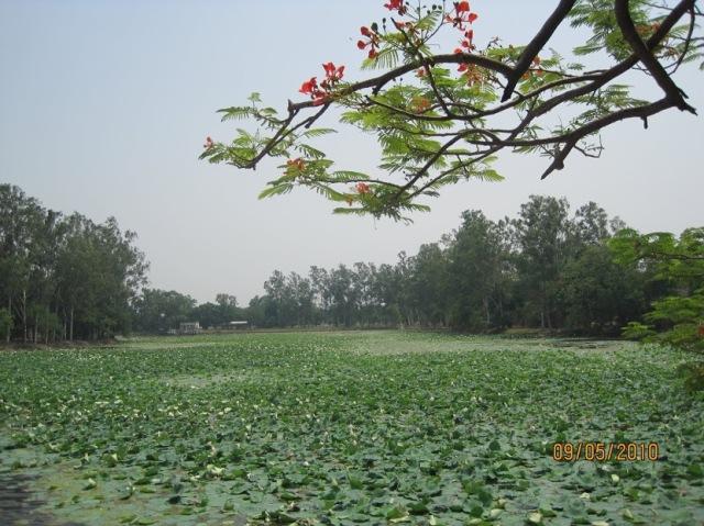 Bharat Kund,Nandigram