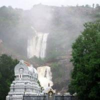 Azhwar Theertham at  Tirupati