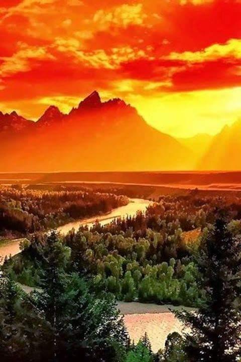 fb_img_1472653876694.jpg