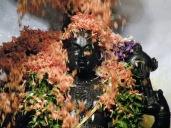 lord_balaji_abhishekha_flower_seva