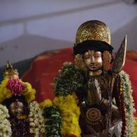 "Thirumangai Azhwar ...."" Manjakuli Utsavam"" and  Thirunaangur 11 Garuda Sevai Utsavam..vaibhavam ..."