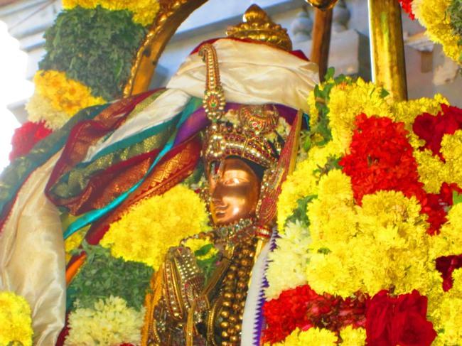 Thirunangur-Garuda-Sevai-Azhwar-mangalasasanam-at-Pandal-2014-0062