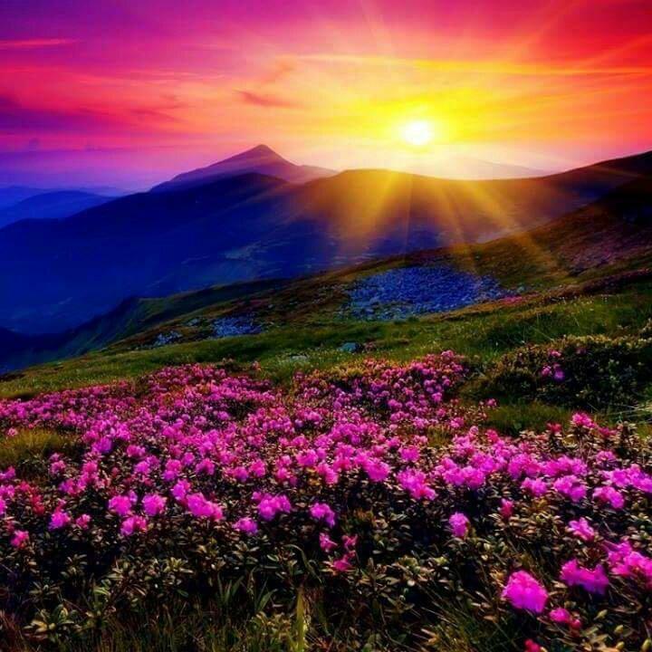 .facebook_1510193779746.jpg371309919.jpg